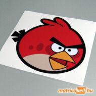 Angry Bird matrica