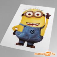 Minion matrica