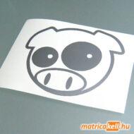 Pig matrica