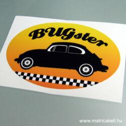 Bugster matrica