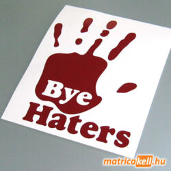 Bye Haters matrica