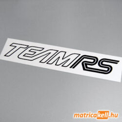 Ford Team RS matrica