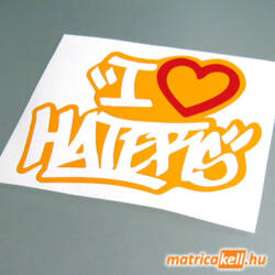 I love haters matrica