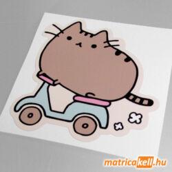 Pusheen cat matrica