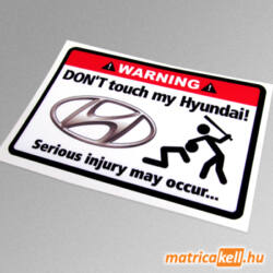 Don't touch my Hyundai matrica